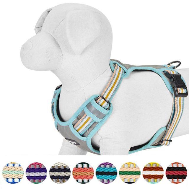 Blueberry Pet 3M Reflective Mesh Padded Dog Harness