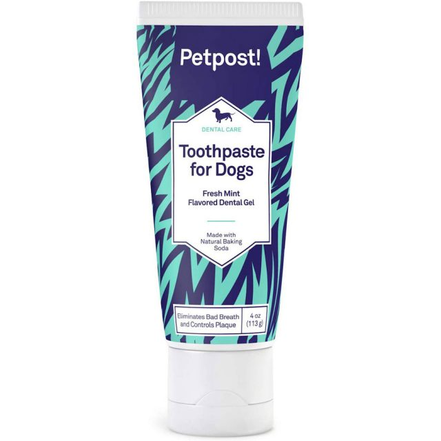 Petpost Coconut Oil Baking Soda Dog Toothpaste