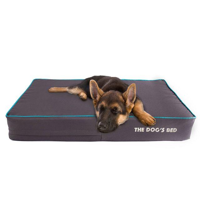 The Dog Premium Orthopedic Waterproof Memory Foam Dog Bed
