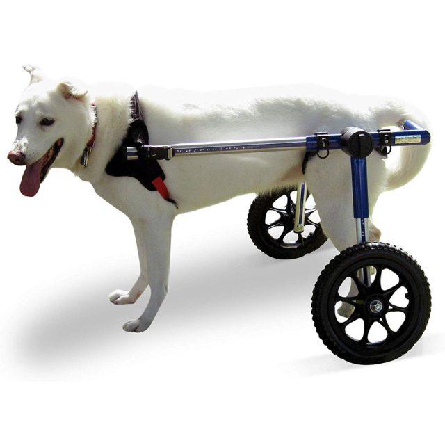 Walkin' Wheels Veterinarian Approved Dog Wheelchair